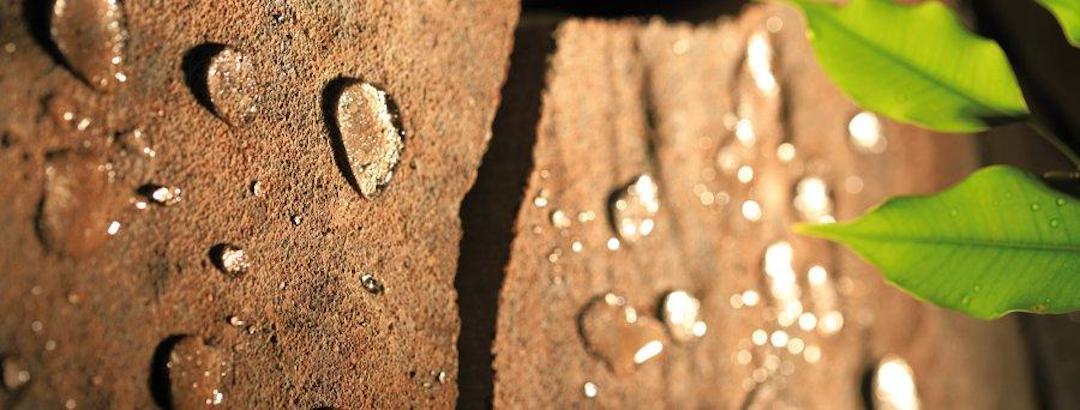 Čištění a mytí zámkové dlažby
